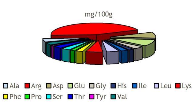 Perfil aminoacídico de la horchata de chufa