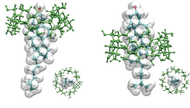 Representación tridimensional del colesterol encapsulado en ciclodextrinas