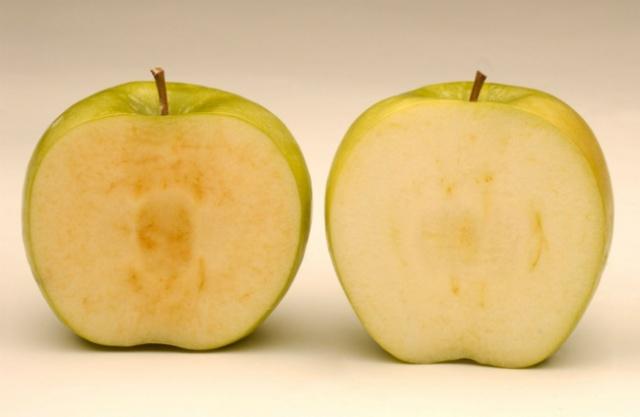 ¿En cuál de estos dos cortes de manzana la actividad polifenoloxidasa es mayor?