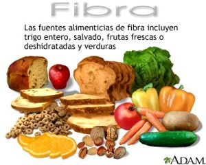 Fibra-dietetica