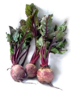 Las betalaínas que contiene la remolacha roja (Beta vulgaris) se utilizan a modo de colorantes en la industria alimentaria.