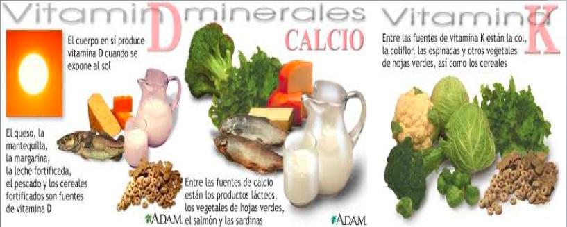 Alimentos calcio y vitamina d