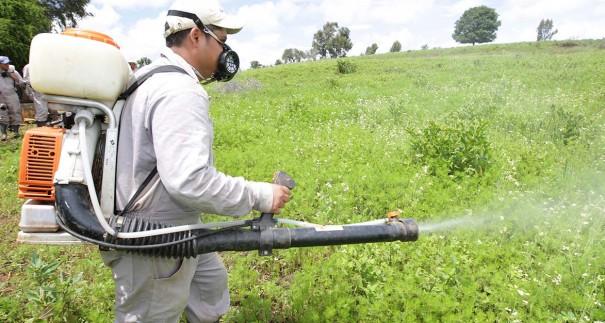 pesticidas-605x323