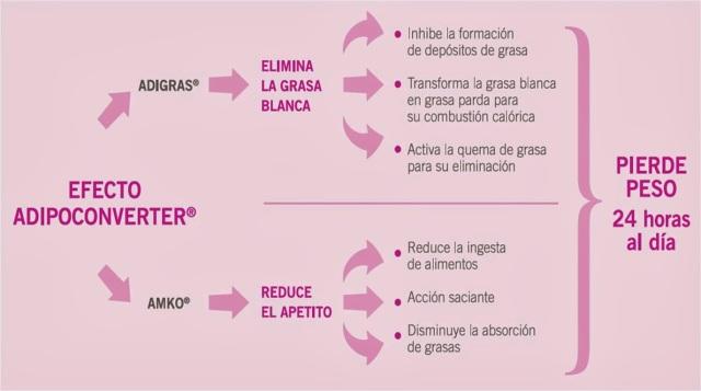 Efecto-Adipoconverter