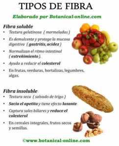 tipos_fibra