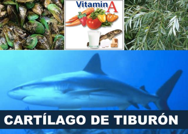 Mejillón de labios verdes, vitamina A, sauce y...cartílago de tiburón.