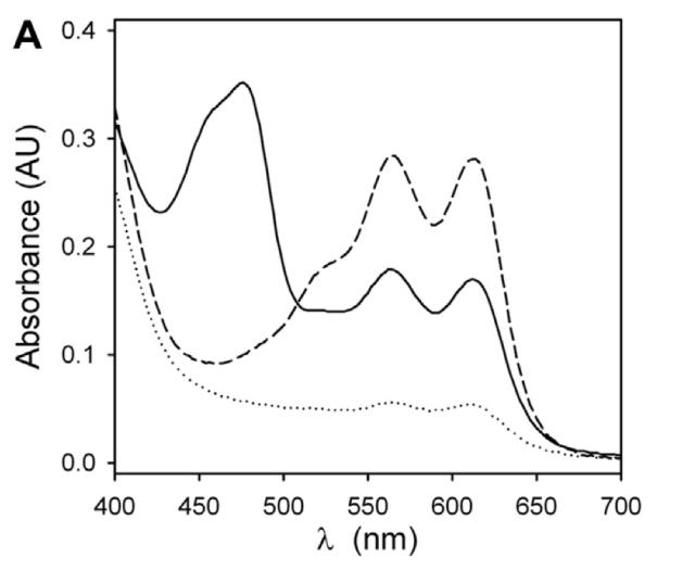 Espectro de los productos de COX sobre araquidónico en presencia y ausencia de betalaínas