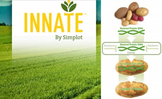 patata_innate_1-680x415-2