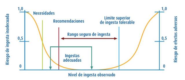 Relación entre la ingesta habitual y la probabilidad de efectos adversos sobre la salud, incluyendo las diferentes ingestas dietéticas de referencia (Gil et al., 2010)