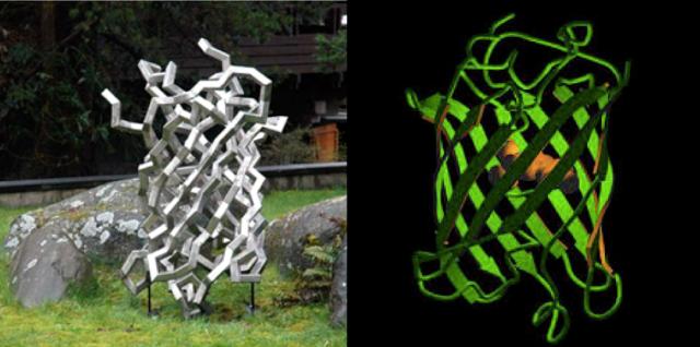 La medusa de acero (izq.) y la GFP (der.)