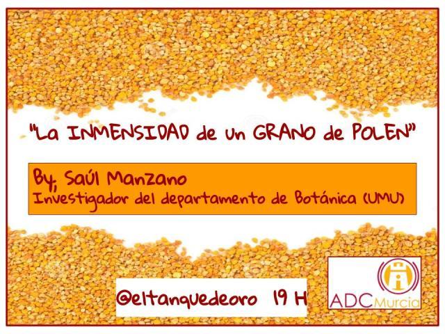 Cartel charla 29-01 Saúl Manzano