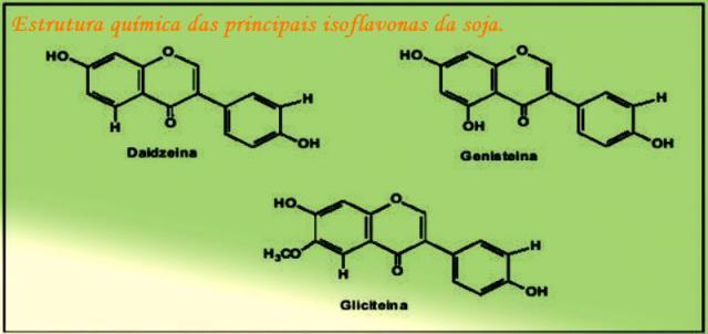 isoflavonas-mol1