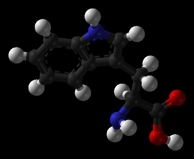 tripofano-0.png