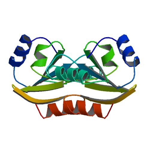 PBB_Protein_TXN_image.jpg